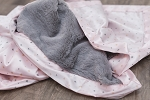 Saranoni Gray Lush Blanket with Blush Twinkle Star Satin Back