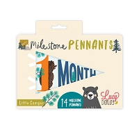 Little Camper Milestone Pennants